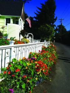 2013-may-june-1859-magazine-oregon-coast-neskowin-from-where-i-stand-fence-and-flowers