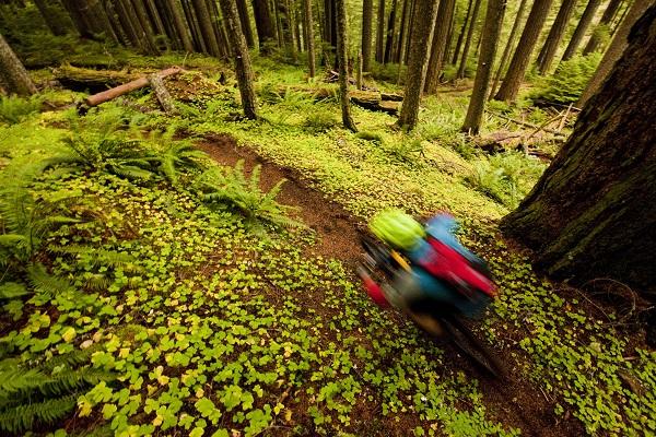 march-april-2014-fierce-mountain-bike-rides-2
