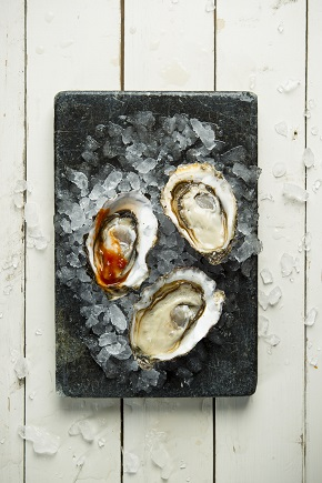 terry manier, coast, oysters