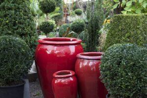 1859_Oregon_March_April_2015_Gardening_Karen_Lynn_1