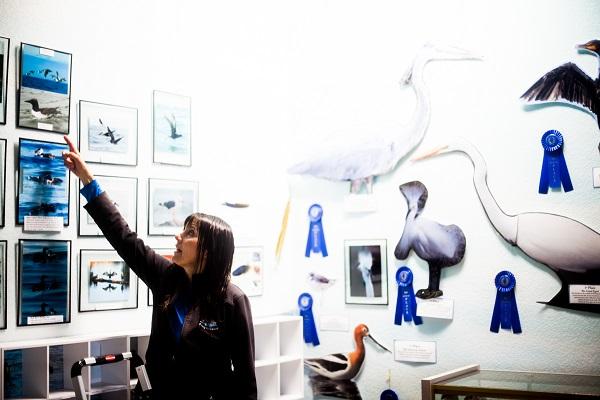 Talia_Galvin_Coast_Carrie_Newell_Whalewatching_Depoe_Bay_Museum_Sharks_Sea_Lions_13