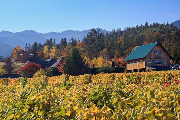marc salvatore, oregon wine, oregon wineries, oregon winemaking-David