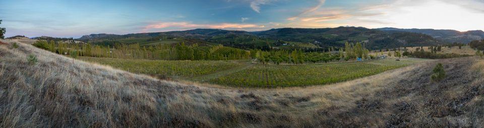 analemma_wines_2015