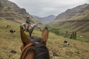 July_August_2015_Feature_Oregon_Cowboy_Cannon_Brown_Eastern_008