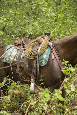 July_August_2015_Feature_Oregon_Cowboy_Cannon_Brown_Eastern_015