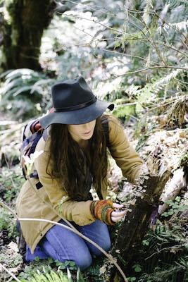 mushrooms, foraging