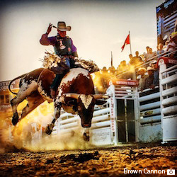 Sisters-Rodeo_Brown-Cannon_Web-copy
