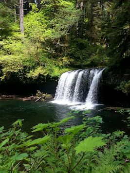 oregon_hikes_butte_creek_falls_Shawn_forsythe