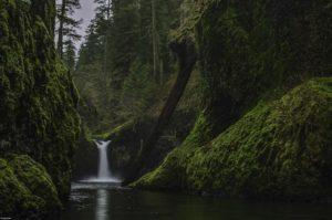 oregon_hikes_eagle_creek_trail_keder_douglas