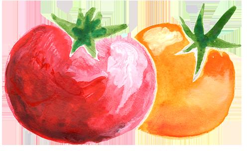 Oregon tomato