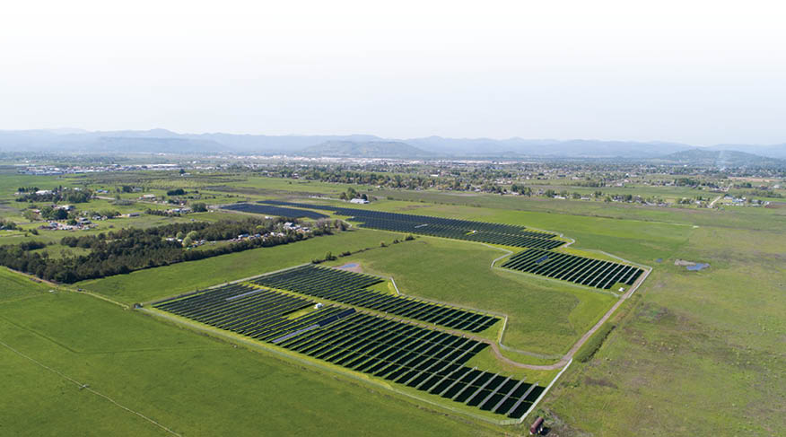 solar bee farm