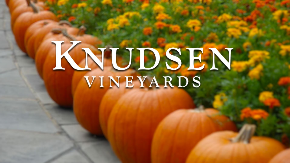 Autumn Outlook Package at Knudsen Vineyards – family friendly!