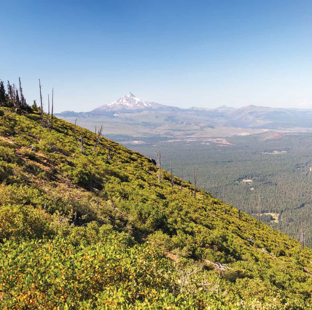 Staggering views from Black Butte should be celebrated with a cold can of Black Butte Porter.